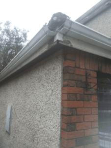 southdublinroofing.ie Guttering Replacement in Dublin